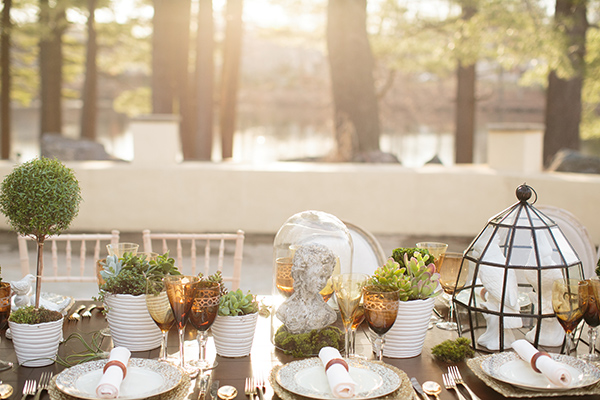 Another table detail with succulents and glass cloches.