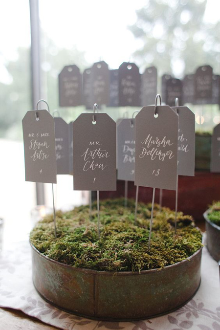 Escort cards in beds of moss.
