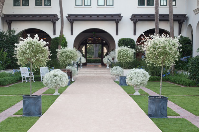 Urns with baby's breath line a wedding path