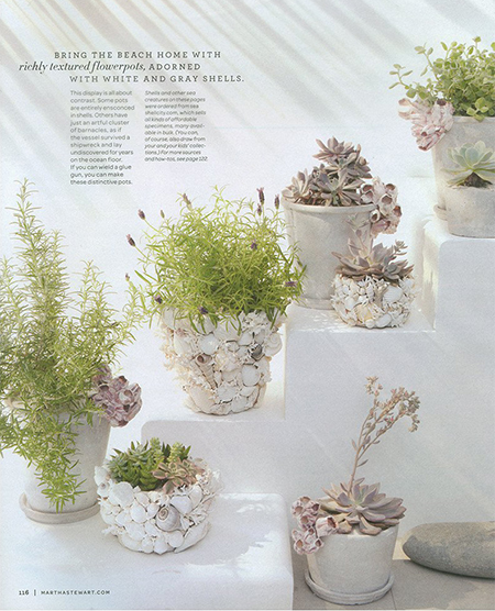 seashell garden pots diy crafts