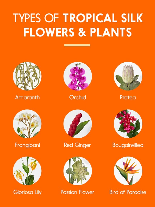Types of Tropical Silk Flowers and Plants