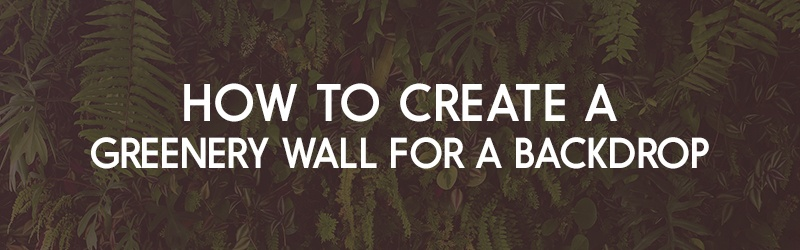How to Create a Greenery Wall for Backdrop