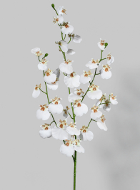 36in White Dancing Orchid Spray