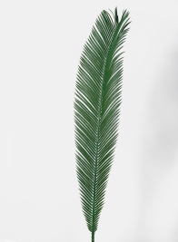 35in Cycas Palm Branch