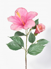 26in Pink & Peach Hibiscus
