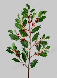 35in Holly Leaves & Red Berries Branch