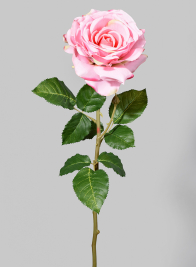 29in Pink Cabbage Rose