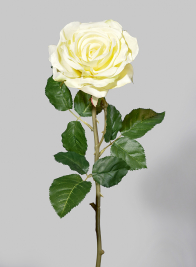 29in Pale Yellow Cabbage Rose