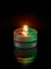 Multicolor RGB Submersible LED Light