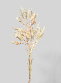 25in Bunny Tail Grass Branch