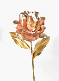 Rose Magnolia With Gold Leaves