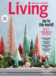 martha stewart living december 2016 cover