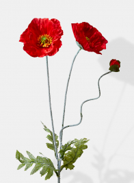 red poppies silk flowers for weddings and events
