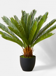 artificial potted sago palm tree window display decor