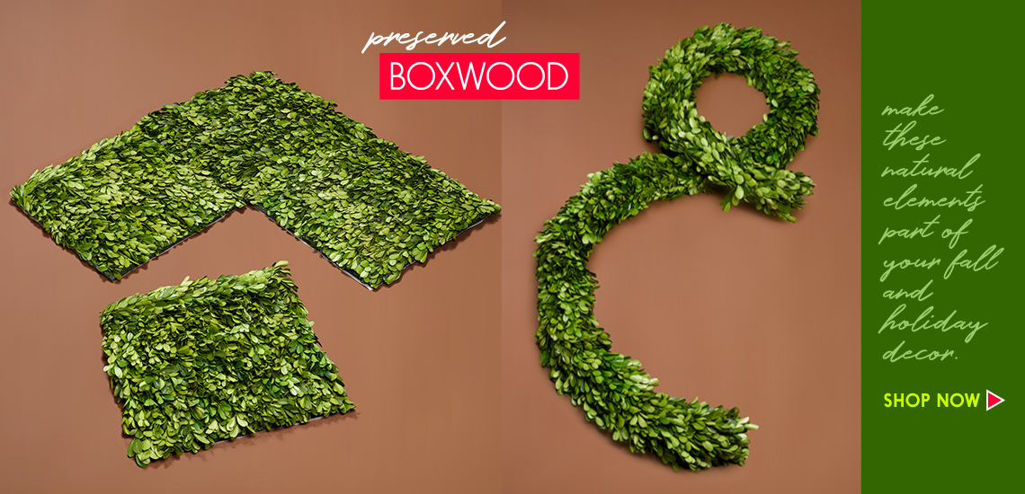 preserved boxwood garland and mats
